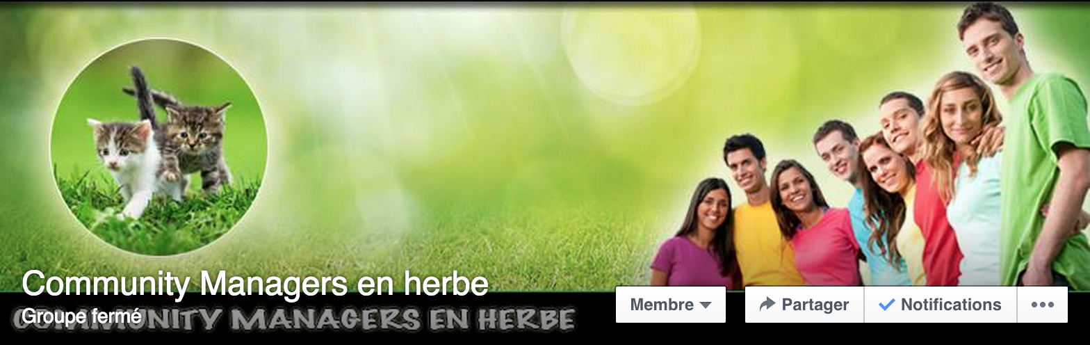 groupe community manager en herbe